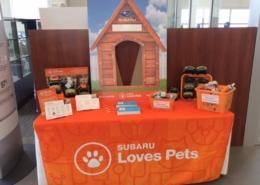 Subaru Loves Pets display